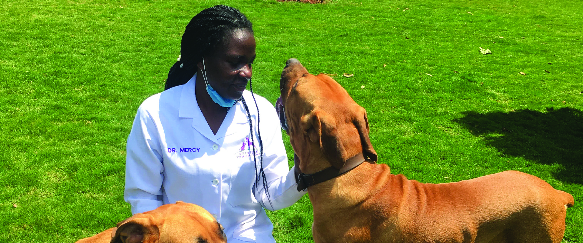 we are committed to providing veterinary care for your pets